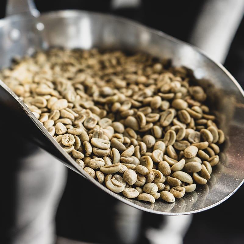 800x800a - Nachhaltiger Kaffee – Gibt's das überhaupt?